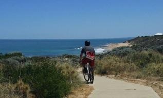 coastal-path-cropped