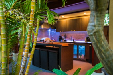 Bali at AvalonOutdoor kithchen4